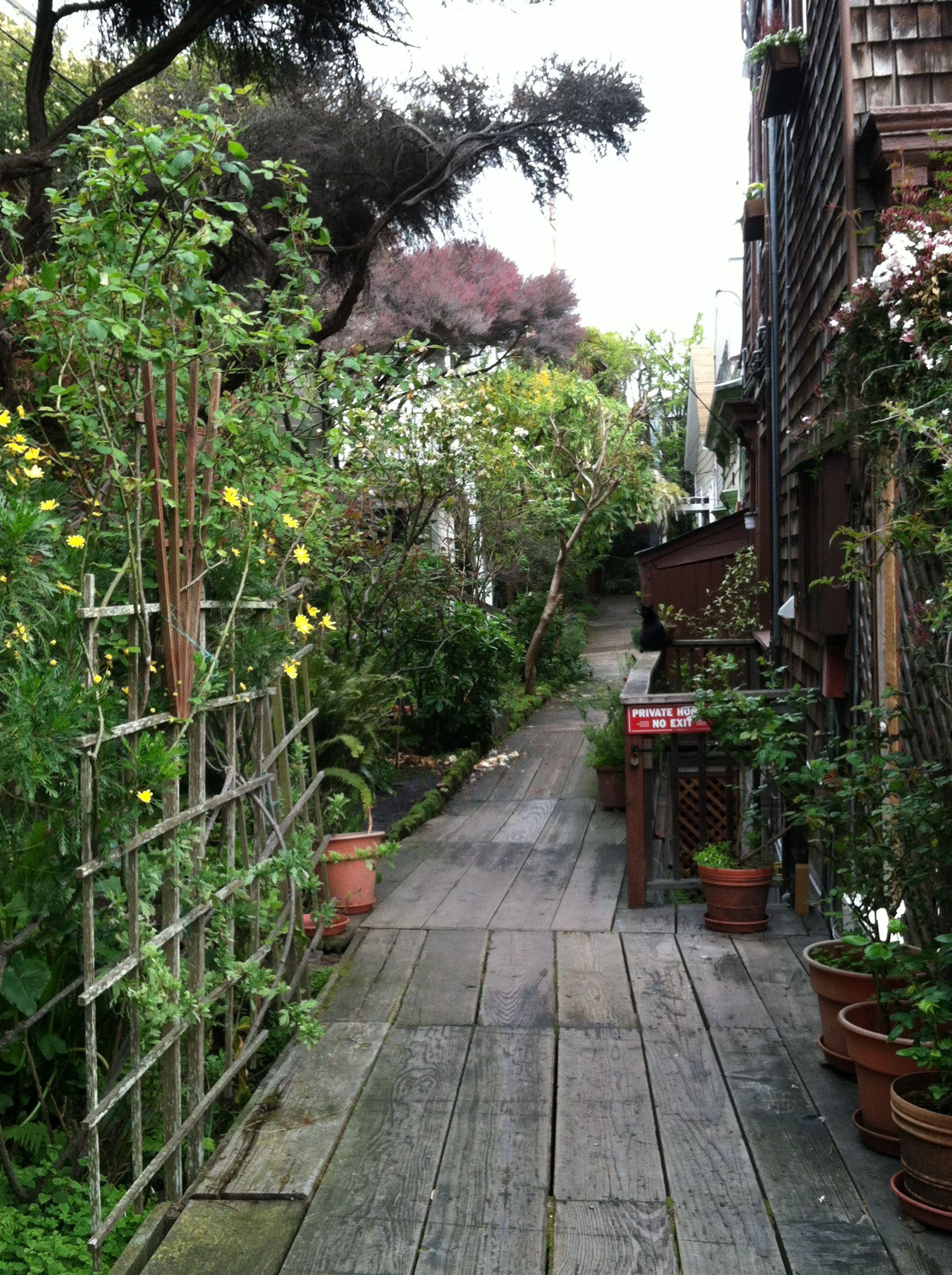 Filbert Street Alley Walkway San Francisco California