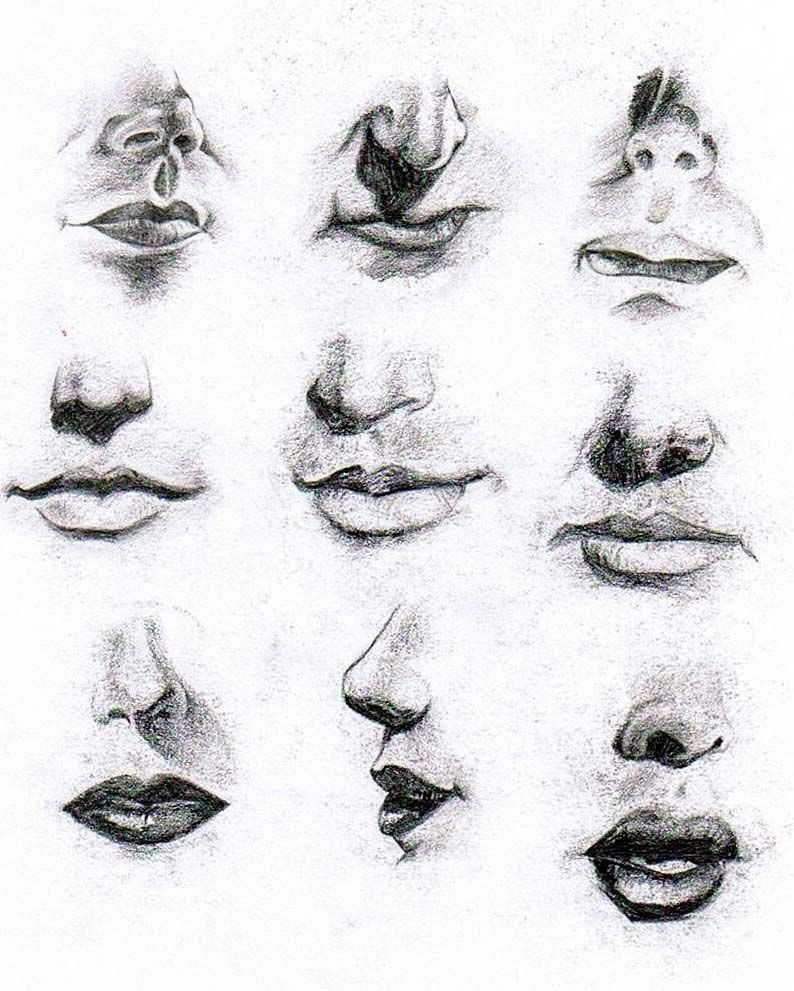 Pin De Alejandra Davila En Art Practica Dibujo Nariz Dibujos Figura Humana Figuras Humanas