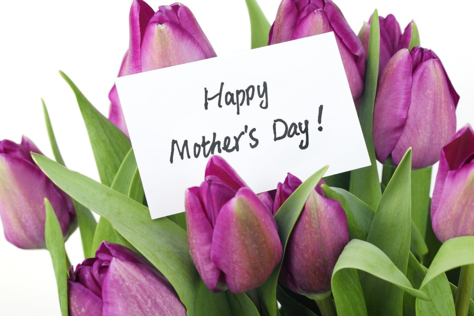 Purple happy mothers day beautiful happy mothers day card with purple happy mothers day beautiful happy mothers day card with purple tulips kristyandbryce Image collections