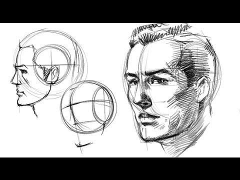 Quick and easy setup for drawing the head correctly reference and art faces ccuart Choice Image