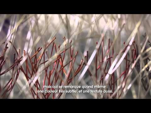 Kye-Yeon Son - Korean aesthetic, North American expressionism - YouTube