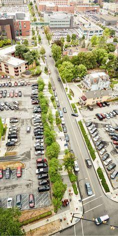 Buffalo Niagara Medical Campus Streetscape