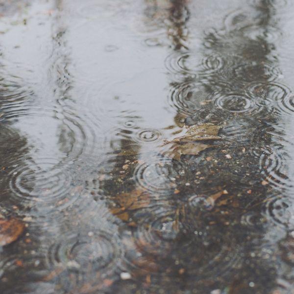 Pluvia by Nina Lindfors, via Behance