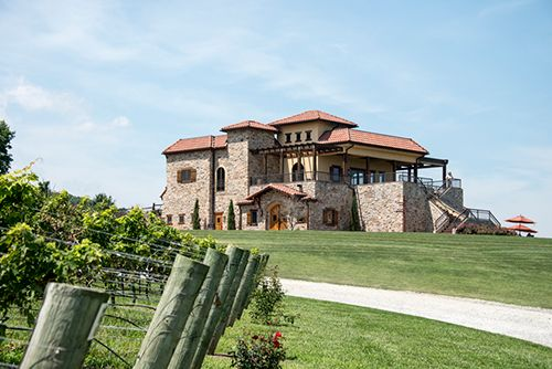 Raffaldini Vineyards Tasting Room, Villa Raffaldini. On the left are the oldest Montepulciano Vines on the East Coast. #raffaldini #wilkescounty #ncwine
