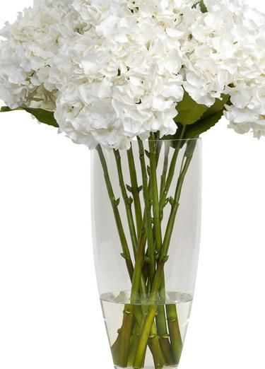 Furniture, White Beautiful Traditional Artificial Flowers And Green Of The Leaves Also The Stem And Also The Water In The Tall Glass Floor Vase You Can Put At Your Bedroom As Your Interior Design Guys ~ The Fabulous Tall Glass Floor Vases