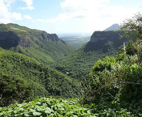 WHEN IN MAURITIUS:  Black River Gorges National Park
