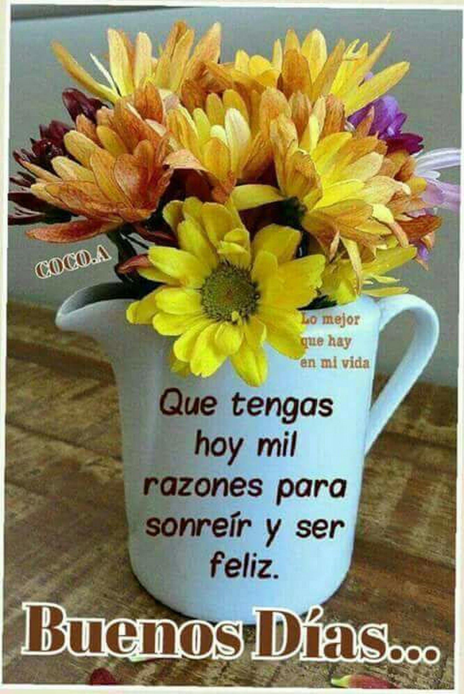 Buenos Días..que tengan un bonito Sábado..👌🌹🌞🙋 | Good ...