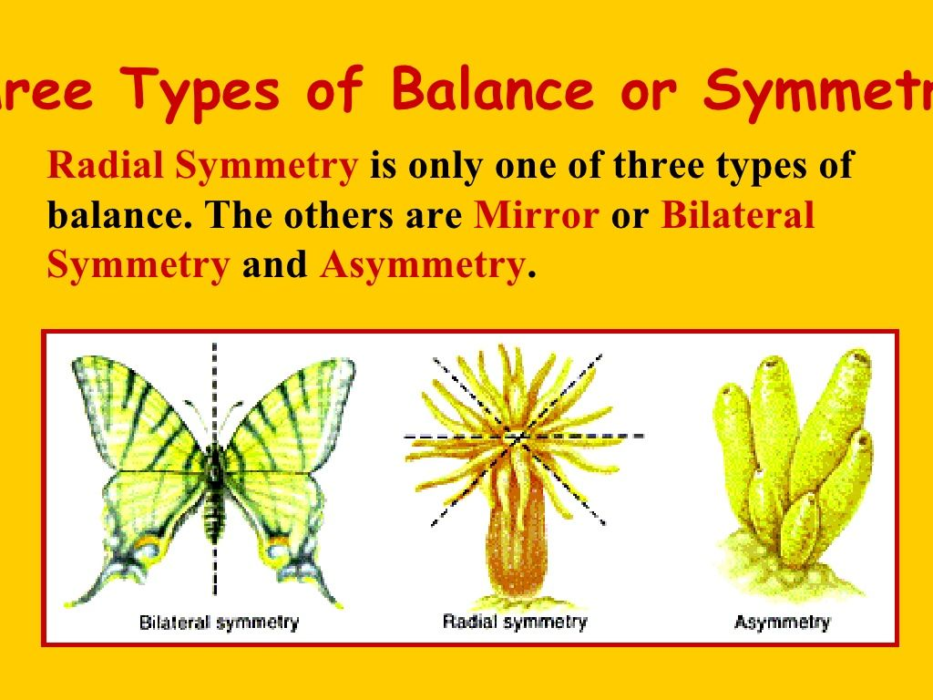 Radial Symmetry With Images
