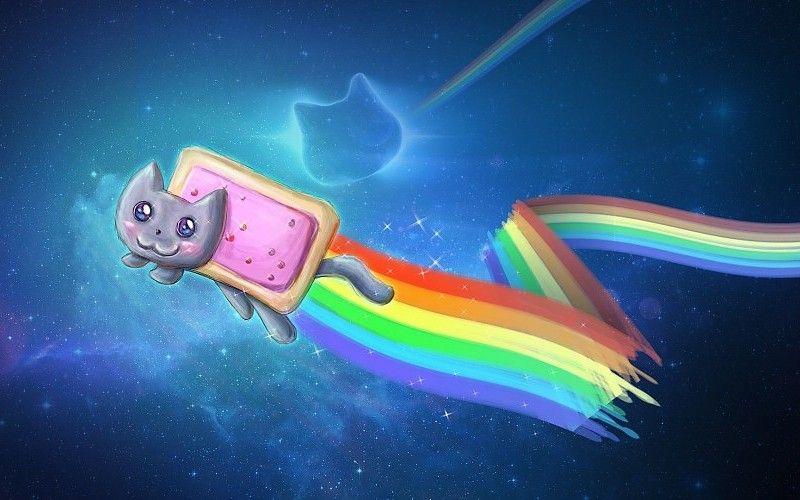 Descargar 2048x1152 Nyan Cat Meme Fondo De Pantalla Cats Wallpaper Nyan Cat Wallpaper Gatos