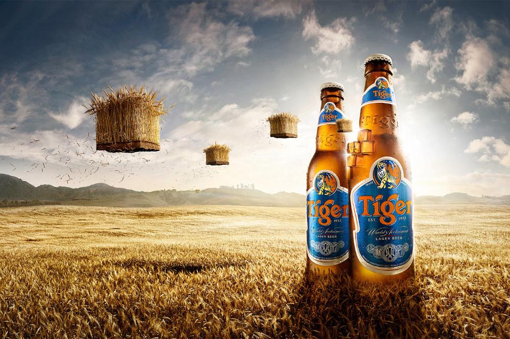 Tiger Beer On Behance Tiger Beer Beer Poster Design Beer