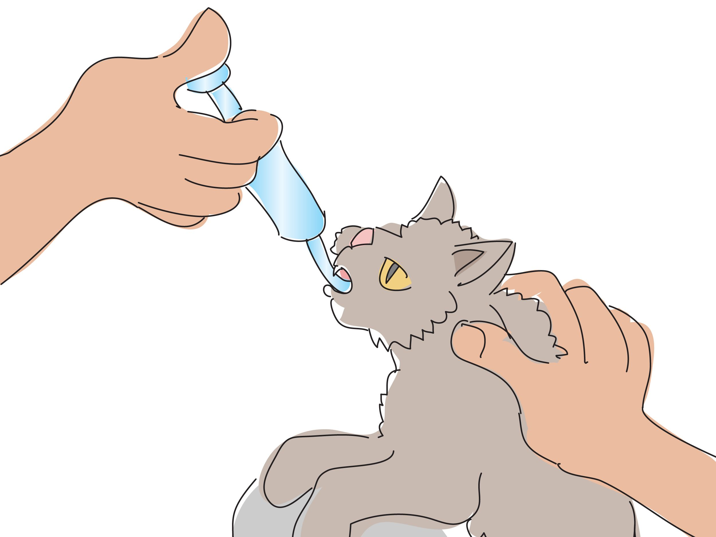 6 Ways To Give A Cat A Pill Raising Kittens Crazy Cats Cats