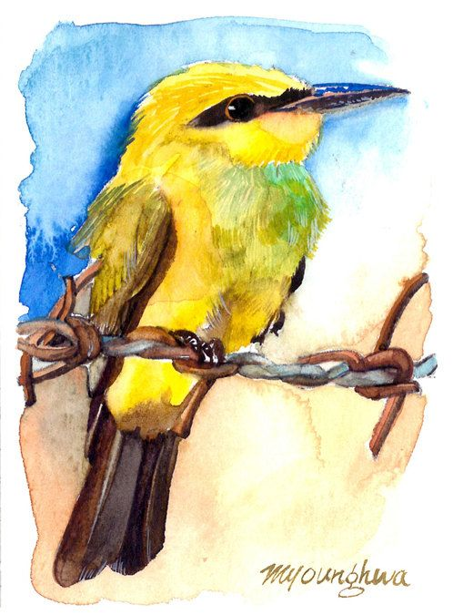 ACEO Limited Edition 1/25- Rainbow Bee-eater, in watercolor