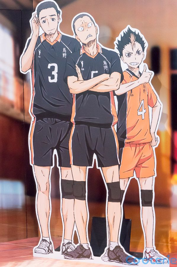 Haikyuu!!: Asahi Azumane, Yuu Nishinoya and Ryunosuke Tanaka Cardboard Cutouts - Cooterie