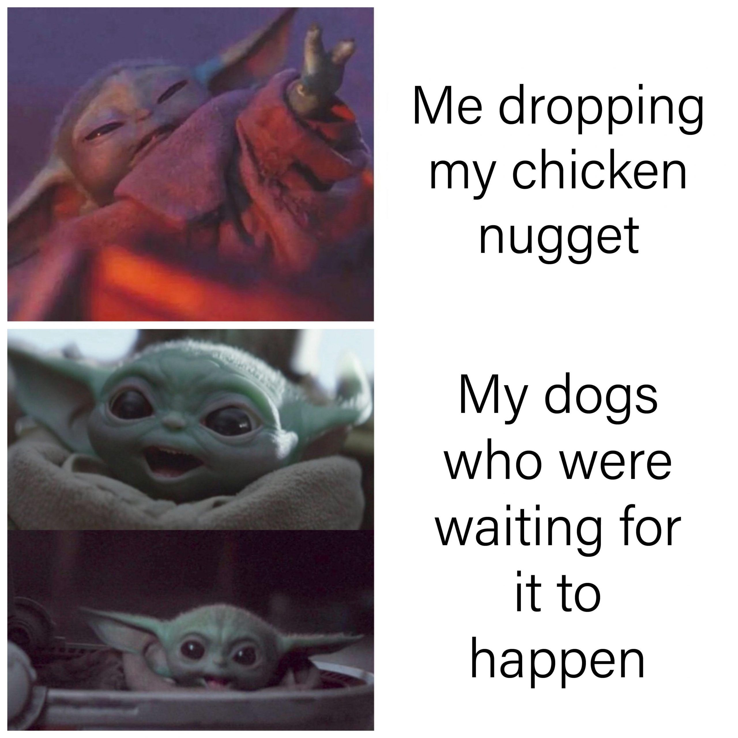 20 Funny New Year 2020 Memes So Hilarious 3 Funny Memes Yoda Funny Memes