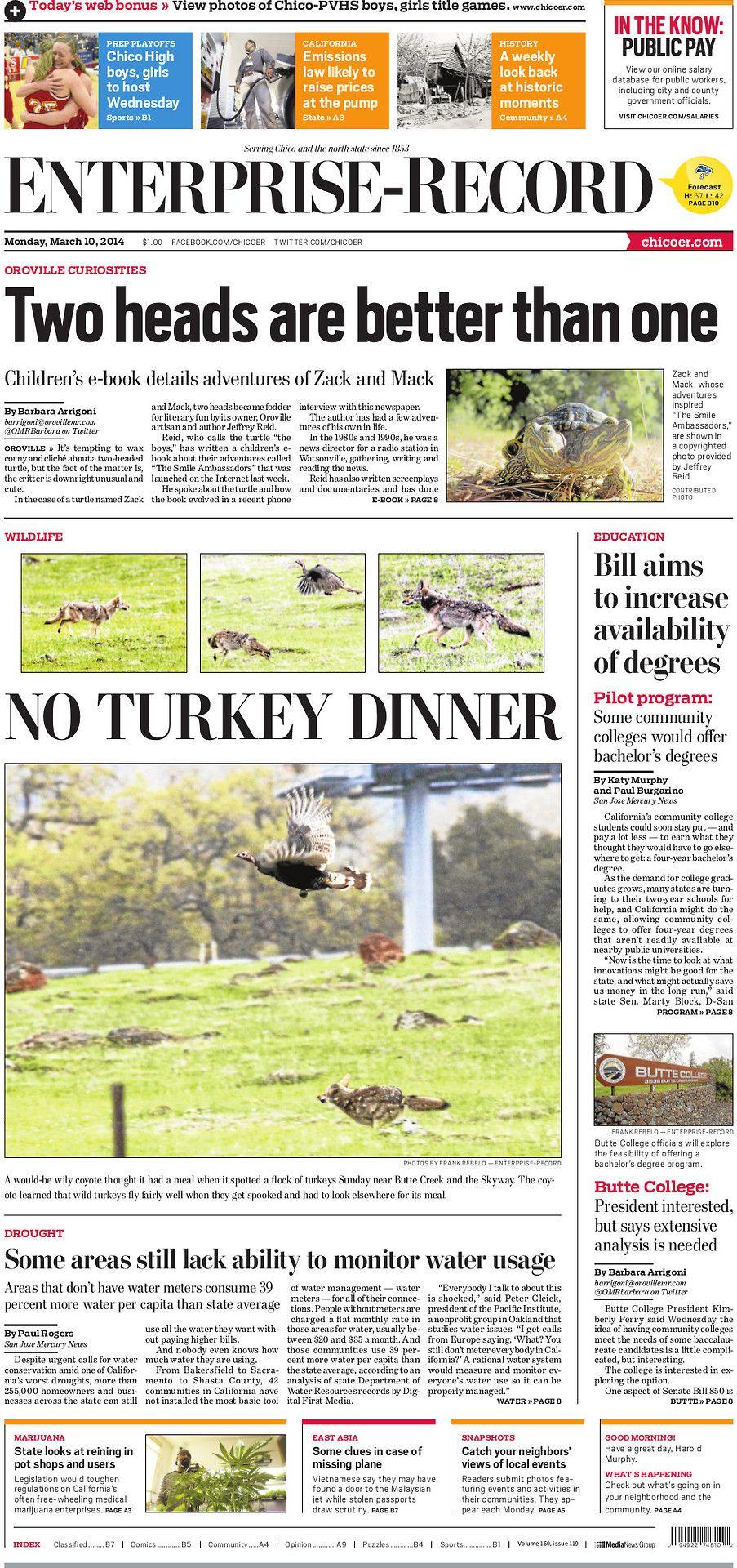 No turkey dinner putting the wild back in wild art a