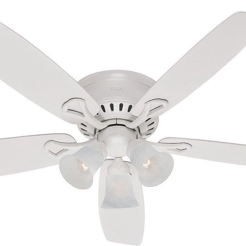 Cordless Ceiling Fans