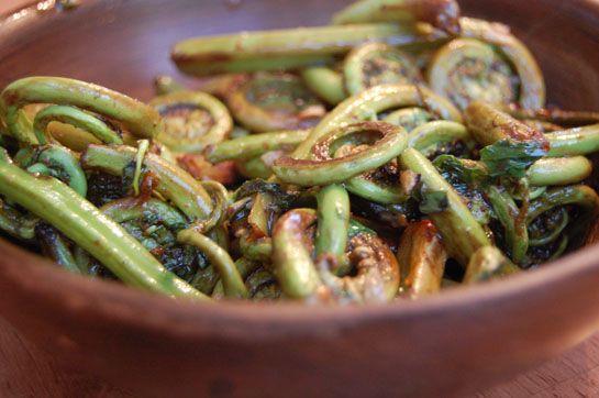 Fiddlehead fern recipe pasta