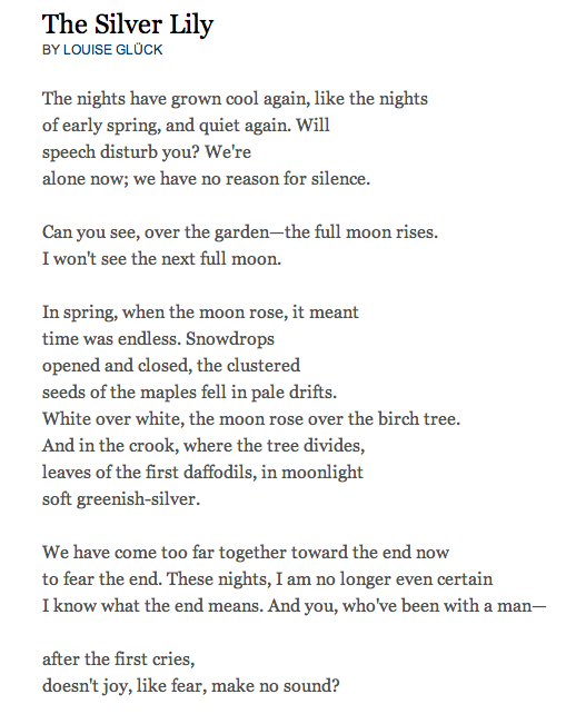 Silver Lily By Louise Gluck Poetry Poem Poems Poetry