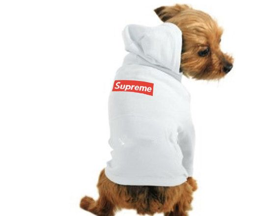 Supreme Lv Hoodie For Dogs | City of Kenmore, Washington