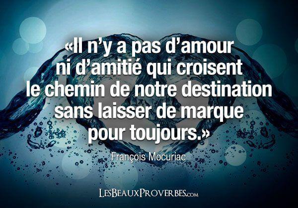 Citation Y A Pas D Amitie