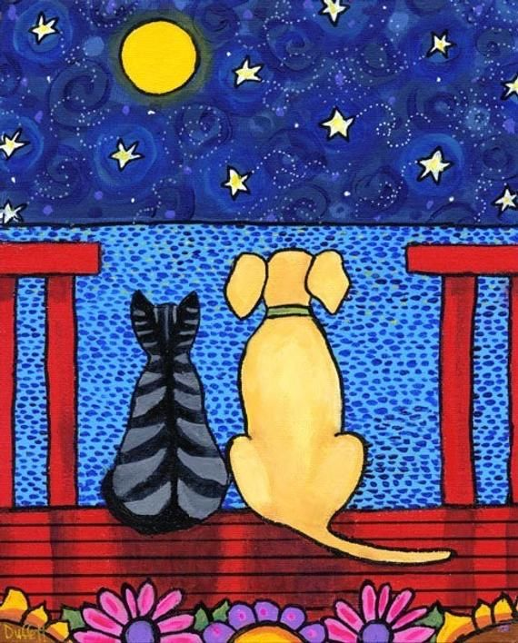 Best Friends, Tabby Cat, Dog, starry night, Nova Scotia artist, – free shipping print Shelagh Duffett