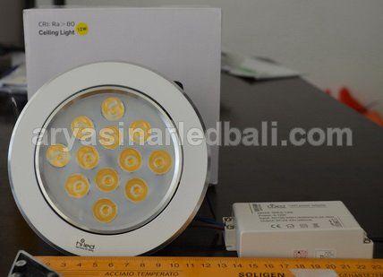 LED Ceiling Light 12 Watt