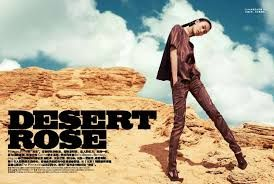 desert rose photography concept - Google Search