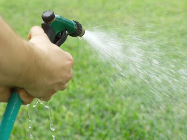 Six Lawn Care Mistakes To Nix Lawn Care Lawn Care Business Watering Lawn