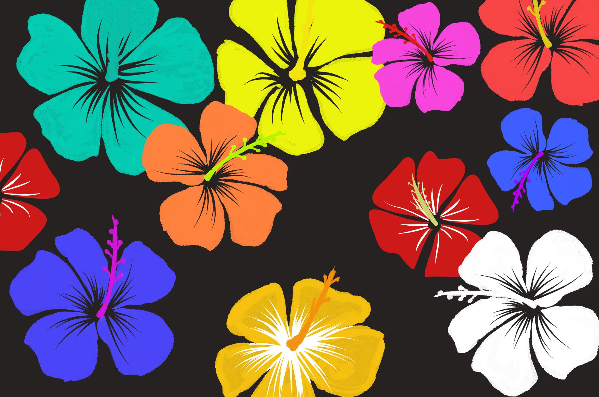 ハイビスカスイラストとっても可愛い花の素材沖縄と暖かい南国の海を