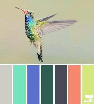 Colibri Paletas De Colores Combinaciones De Colores De Moda