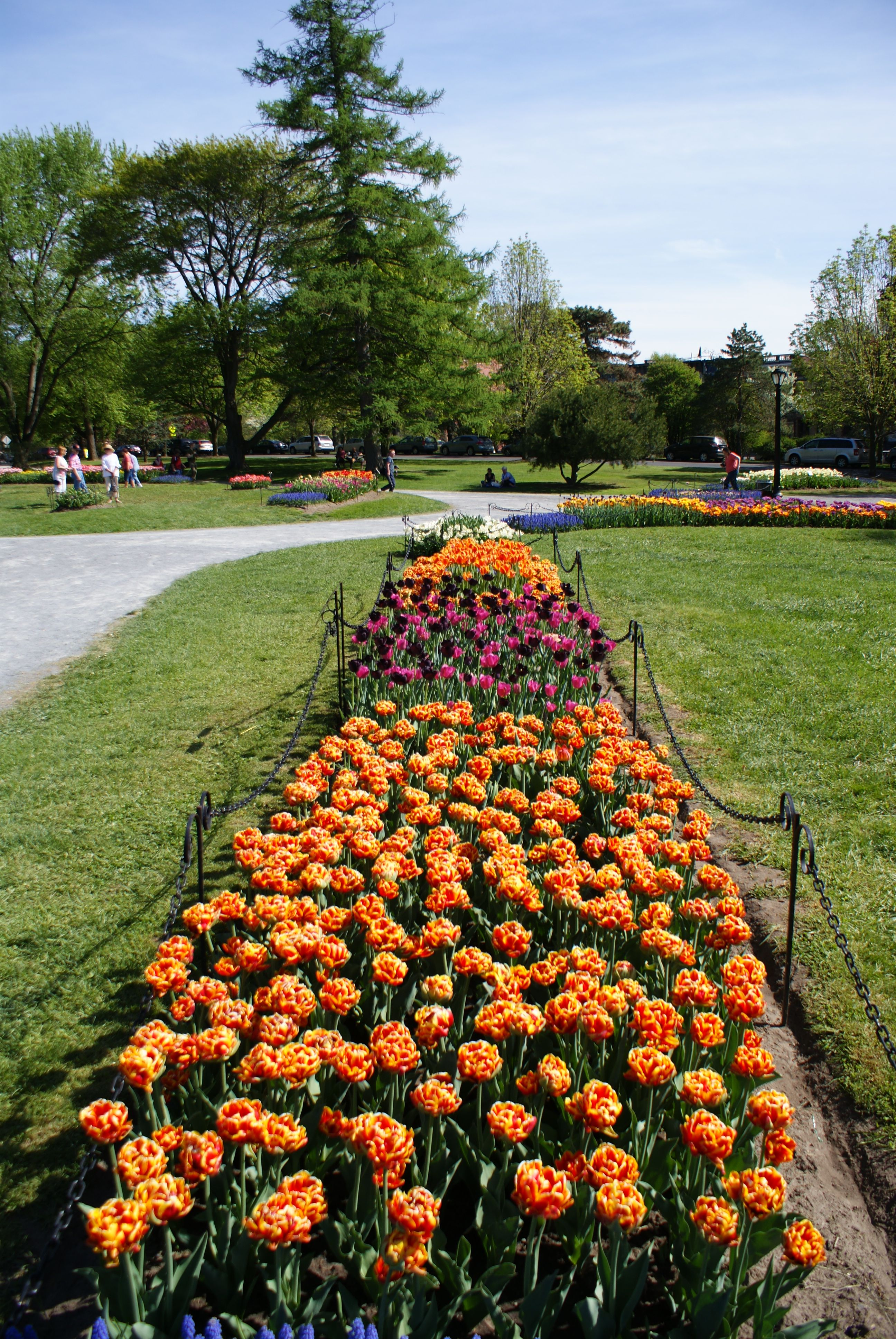 Visit Albany In Upstate New York This Spring For A Getaway