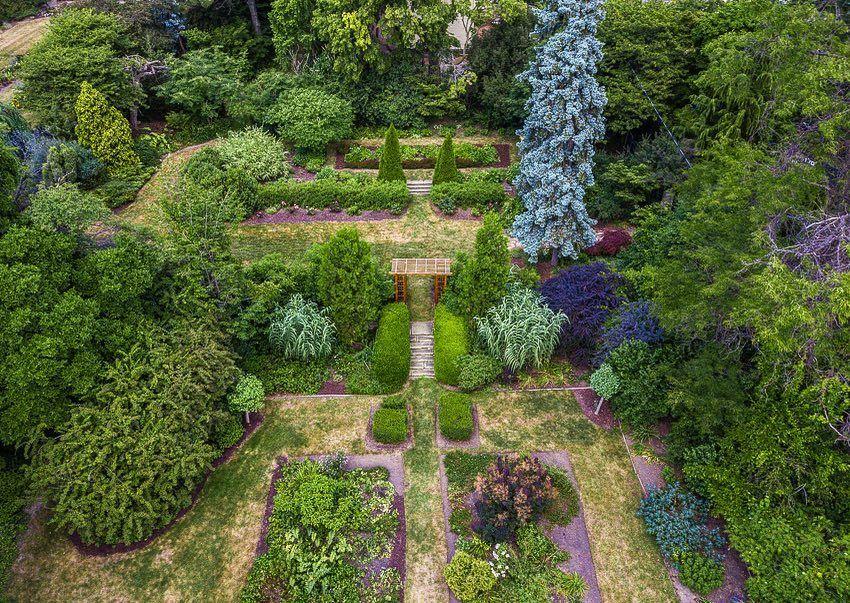 Cooley gardens
