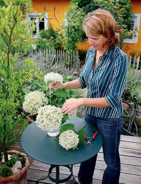schnittblumen frisch halten die besten tipps g rtnern pinterest garten blumen und g rtnern. Black Bedroom Furniture Sets. Home Design Ideas