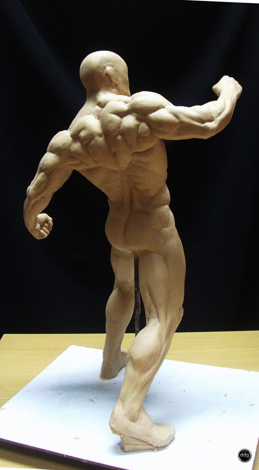 Figura de estudio anatómico | Figuras de, Estudios y Anatomía