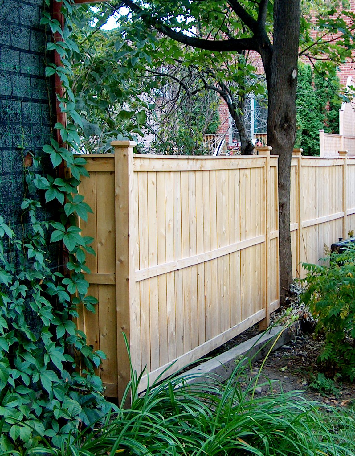 have trees on your fence line lanark cedar can provide the