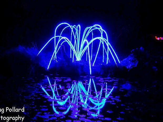 76e60f651f2dbd1a53acfafb7877c337 - Festival Of Lights Mendocino Coast Botanical Gardens
