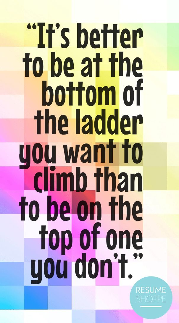 Itu0027s better to be at the bottom of the ladder you want to climb - the ladders resume