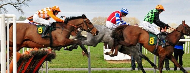 English Horse Racing Strategy Horse racing, Betting