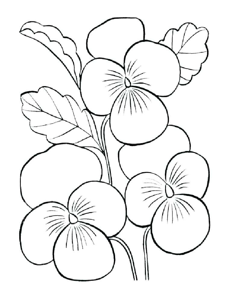 Small Flower Coloring Pages Small Flower Coloring Pages Violet Printable Flower Coloring Pages Flower Coloring Sheets Coloring Pictures