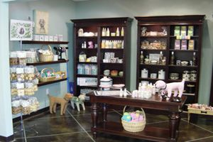 Pet Boarding Facility, Spa, and Stylish Paw Boutique in Novi, MI