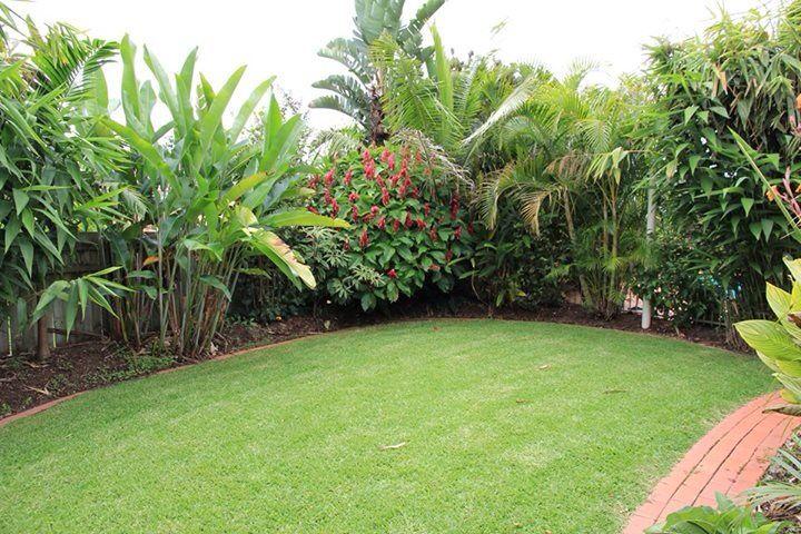 tropical border garden