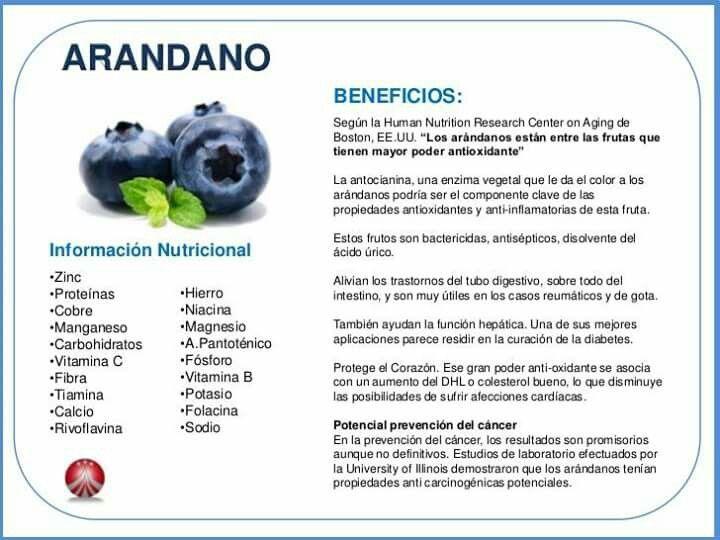valor nutricional de los arándanos en la diabetes
