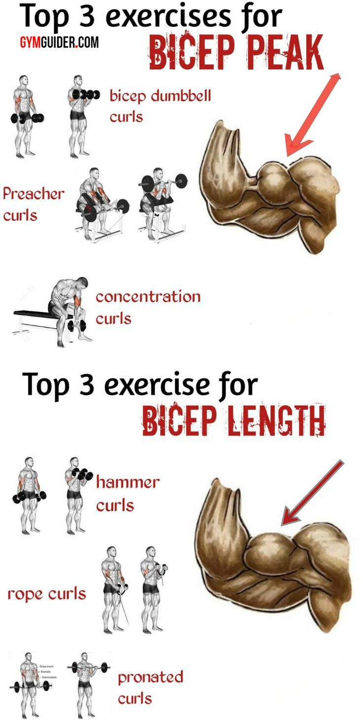5 Biceps Tips That Build Size No Matter Your Level Of Experience