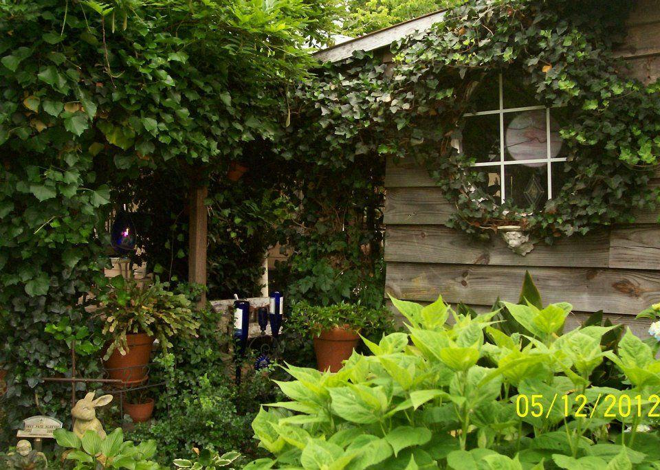 Greenhouse window home and garden garden plants
