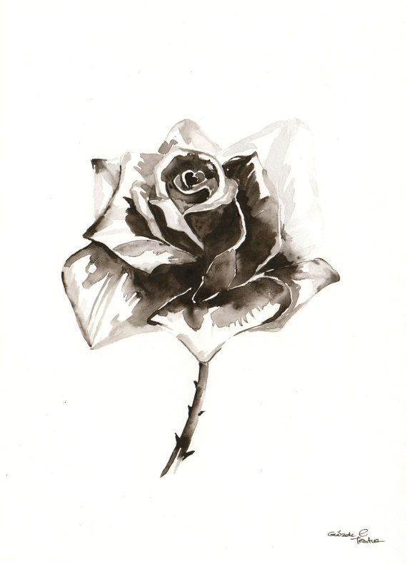 Original Watercolor Painting Black White Grey Rose by ...