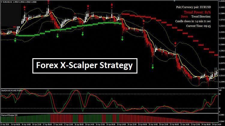 Forex Trading Forexnovice With Images Scalper Forex Forex