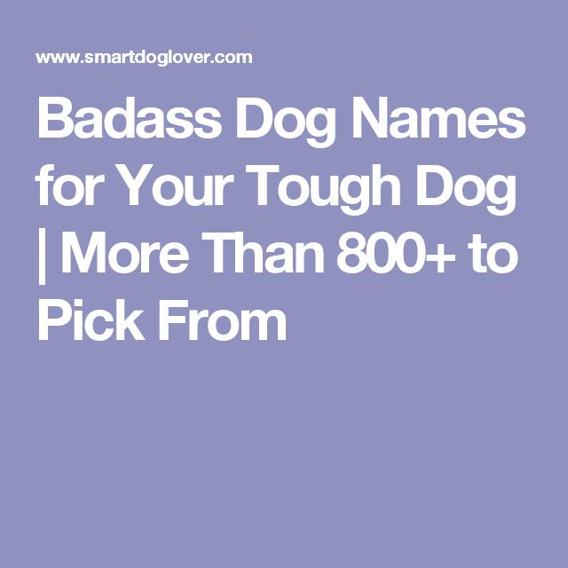 Badass Dog Names For Your Tough Dog More Than 800 To Pick From Dog Names Tough Dog Names Girl Dog Names