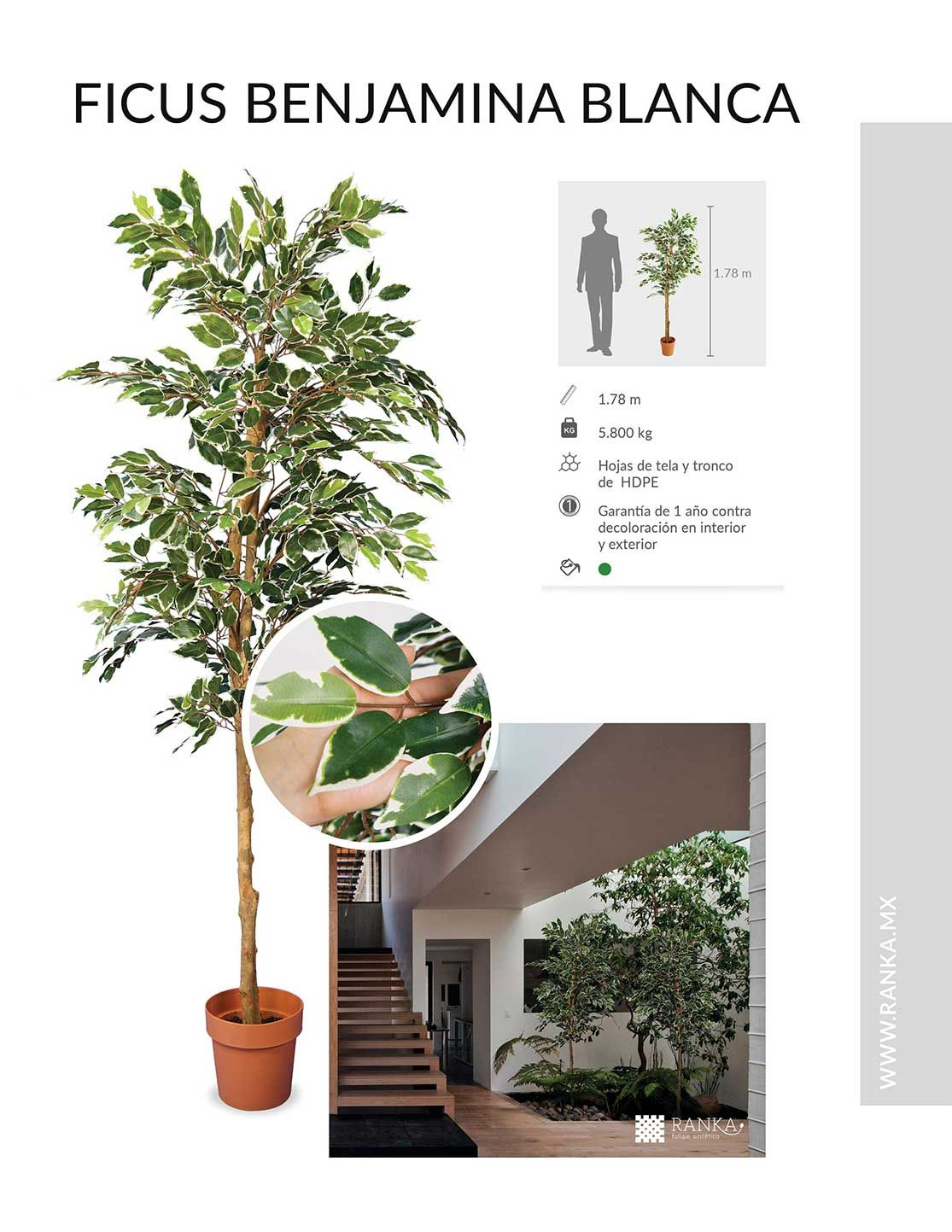 Catalogo ranka follaje artificial enredaderas for Plantas artificiales jardin vertical