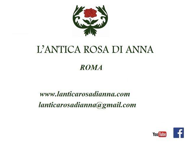 NOME  E  SITO  WEB  -  Bed and Breakfast  L'Antica Rosa di Anna  -  Via Lorenzo Bonincontri, 21  -  Tel.  3895325869  -  Idoneo per disabili - Non esistono barriere architettoniche