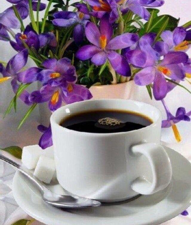 Лет, открытки с добрым утром кофе цветы